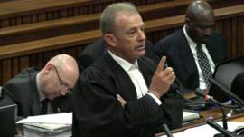Gerrie Nel cross-examines Oscar Pistorius