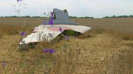 Malaysia Airlines flight MH17 came down in Ukraine