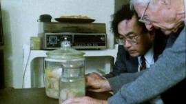 Kenji Sugimoto and Thomas Harvey looking at Einstein's brain
