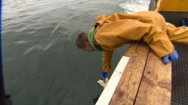 Man picking up litter in the sea