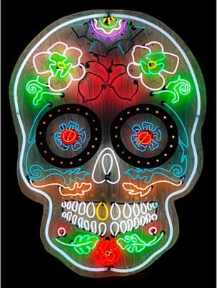 in_pictures Skull art