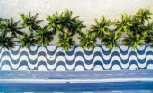 ประชาชนขณะเดินทางผ่านลวดลายบนทางเท้า ที่มีแนวต้นปาล์มให้ร่มเงา ริมชายหาดโคปาคาบานา ในนครรีโอเดจาเนโร ของบราซิล
