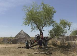 Children play around a tree in the drought-ridden Hille Bar village, Chad.