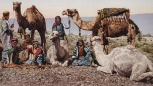 Una caravana de camellos descansa en el desierto de Sira, foto tomada en 1895 por Félix Bonfils. Swiss Camera Museum Collections