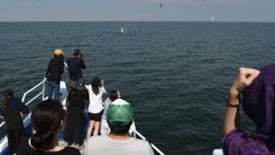 นักท่องเที่ยวดูวาฬบรูด้า ในทะเลอ่าวไทย