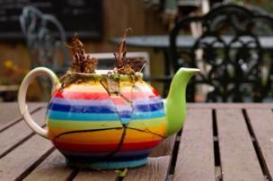A broken colourful teapot containing a dead plant