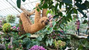 Festival de orquídeas de Kew Gardens