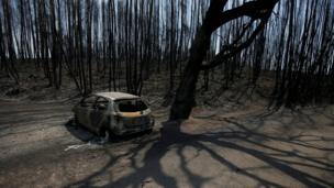 Остов сгоревшей машины в лесу