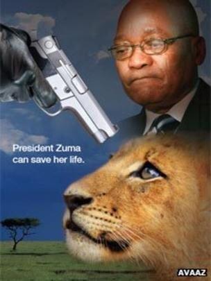 AVAAZ ad using Zuma