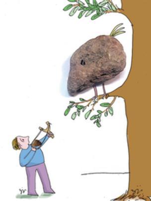 کارتون مسعود ضیایی زردخشویی. قانون