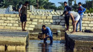 أشخاص يزيلون المياه خارج مقبرة بسبب الأمطار الغزيرة في مدينة أسيوط جنوب القاهرة