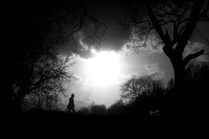 Silueta de un hombre y su perro en el parque