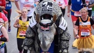 A man runs in a rhino costume
