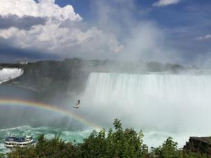 A boat sails past the Niagara Falls waterfall with a rainbow and bird above