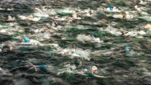 A swimmer takes the clear water at the start of the swim leg of a triathlon.