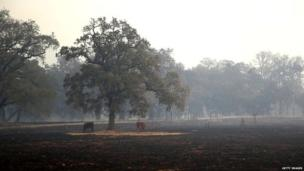 "The California governor has declared an emergency. saying the wildfires ""continue to threaten thousands of homes, necessitating the evacuation of thousands of residents""."