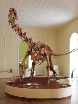 Esqueleto do Maxakalissaurus topai
