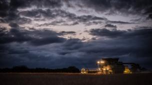 Oil seed rape crop is harvested late into the evening, making the most of the good weather, at Ardley, near Bicester.