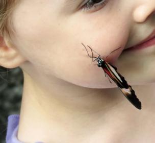"""Эмануиль Каплинский, Торнхилл, Канада: """"Обоюдная находка: бабочка нашла девочку, а, может быть, девочка нашла бабочку. Снимок сделан вблизи Ниагарских водопадов""""."""