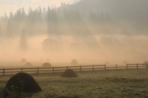 The sun shines over a misty field.
