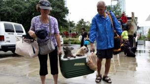 A couple are pictured with two dogs inside a coolerbox