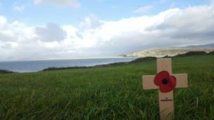A single poppy on Shell Island, Gwynedd