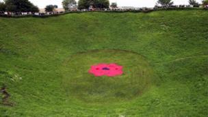 Giant poppy in the Lochnagar crater