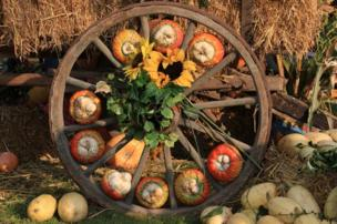 Pumpkins inside the spokes of a wheel