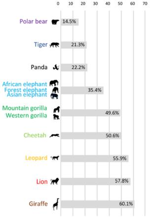 A chart showing that 60 per cent of people did not know giraffes were a vulnerable species