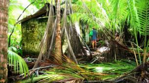Những dấu tích bị bỏ hoang trên đảo.