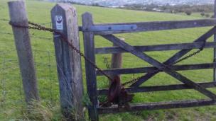 کھیت کا دروازہ