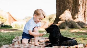 22 July 2016: On his third birthday, Prince George is shown feeding the family pet dog, Lupo.