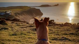 Bryn takes in the glorious Worm's Head view on Gower in this picture by Ashley Williams