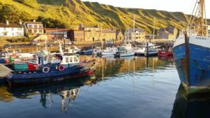 Scrabster harbour