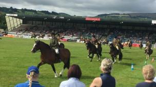 Horses competing in the ring