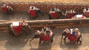 पर्यटकों के लिए हाथी की सवारी.