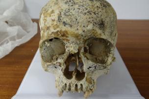 Skull of Ava