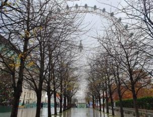 लंदन के लंदन आई के सामने की इस तस्वीर को मारसिया सोरेल ने अपने कैमरे में कैद किया है