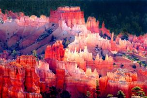Colours at Bryce Canyon National Park in Utah
