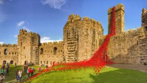 The Weeping Window poppies display at Caernarfon Castle