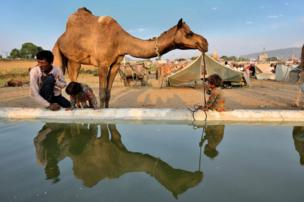 A camel, a man and two children are reflected through a pool of water