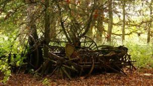 Abandoned machinery near Abingdon