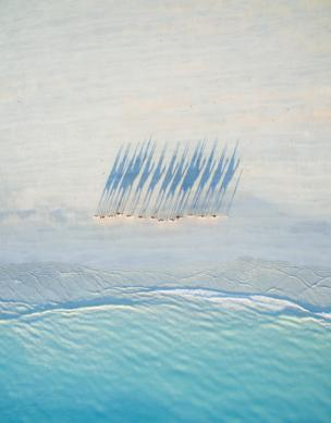 A birds eye view of a caravan of camels walking along Cable beach at sunset.