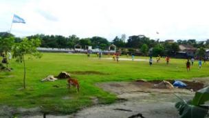 ব্রাজিল-আর্জেন্টিনা ভাগ হয়ে ফুটবল ম্যাচ