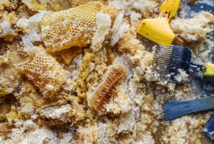 A pile of raw honeycomb alongside tools to break the honeycomb
