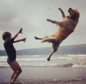 A boy makes a dog fly