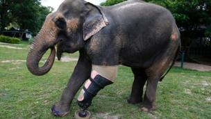 Motola with her new prosthetic leg