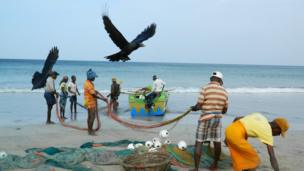 Fishermen load their boat with nets