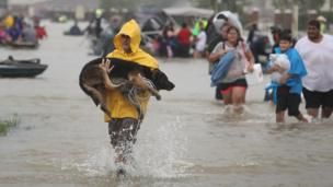 A man carries his dog through flood waters in Houston.