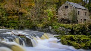 Clayton Davies took this autumn scene at Cenarth Falls in the Teifi Valley